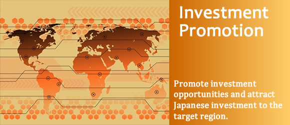 en-image-investment promotion.jpg